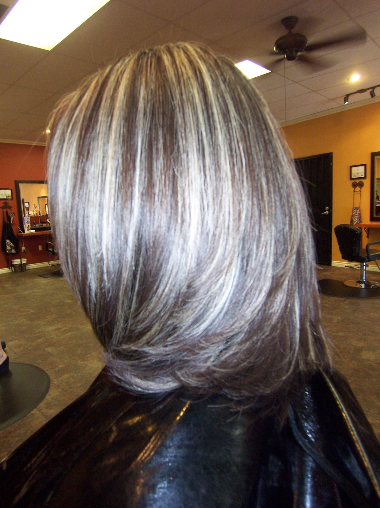 Inner Hair Highlights Hairs Picture Gallery